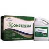 Consensus seeds