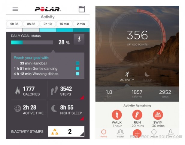 Polar Loop 2 7