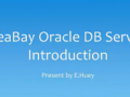 ideaBay Oracle Service Introduction (15 Play)